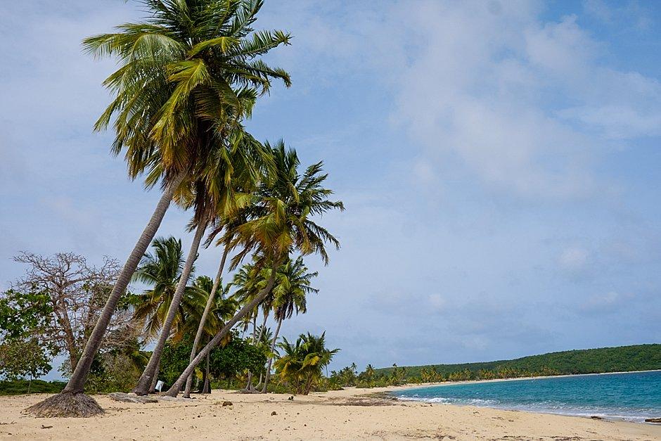 Puerto Rico Trip Vieques Island